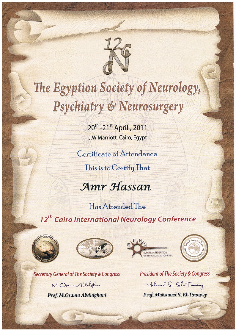 Doctor Neurology Clinic Cairo Egypt