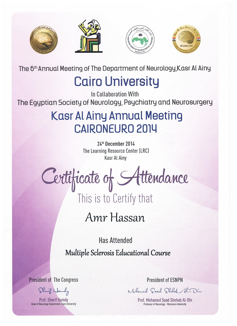 Medical Doctor Cairo Egypt Neurologist Amr